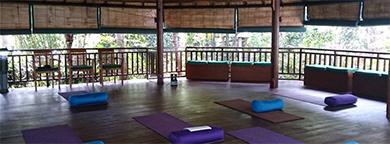 Yoga | Qi EnergyFlow Almere